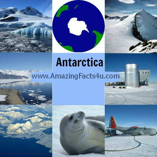 Antarctica Amazing Facts 4U