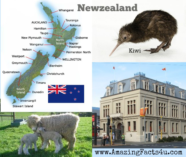 NewZealand Amazing Facts