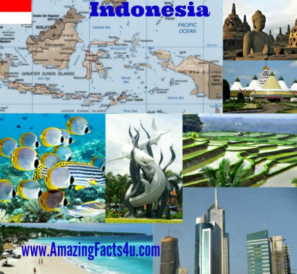 Indonesia Amazing facts 4u