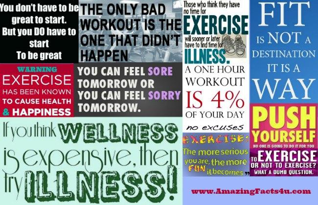 Exercise Amazing Facts 4u