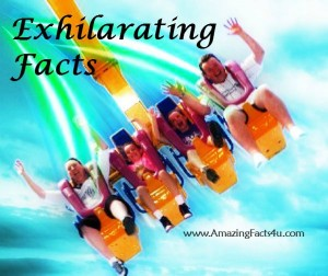 Exhilarating Facts