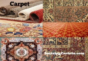 Carpet Amazing Facts