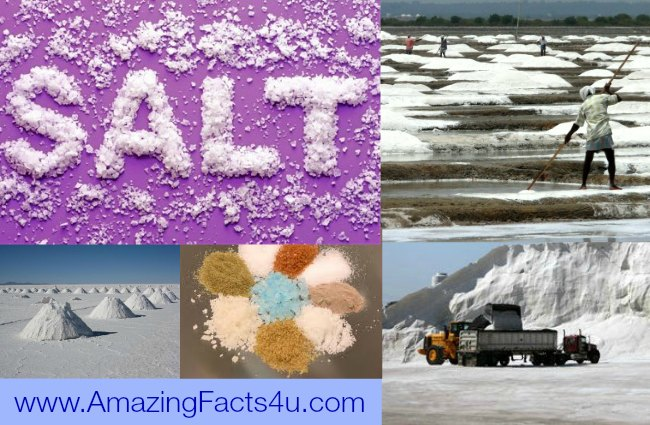 Salt Amazing facts