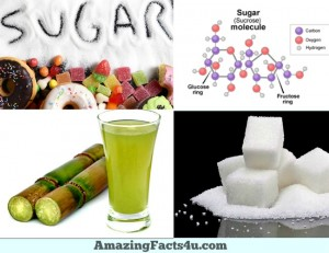 Sugar Amazing Facts