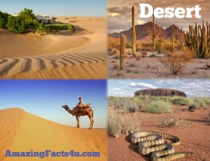 Desert Amazing facts