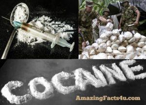 Cocaine Amazing facts