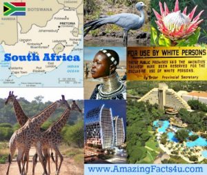 South Africa Amazing Facts