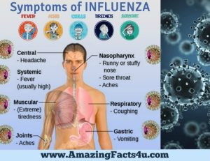 amazing-facts-influenza