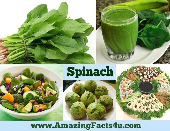 amazing-facts-spinach